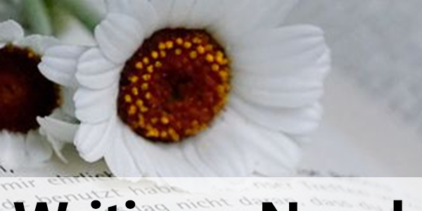 Writing a Novel for Beginners